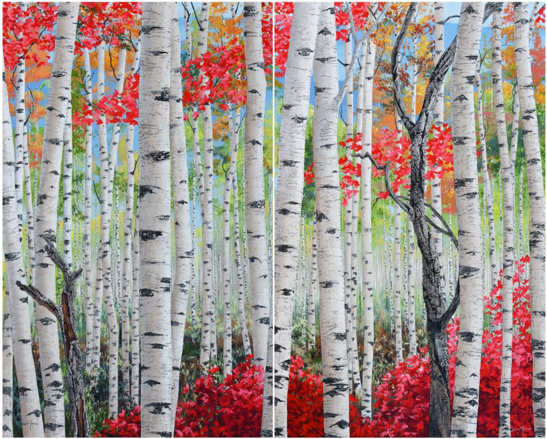 Canadian Birch